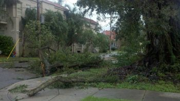 Hurricane Damage in New Orleans
