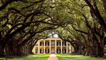 Louisiana Plantation Homes   Experience New Orleans!