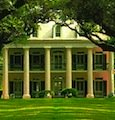 Cajun Encounters Plantation Tours
